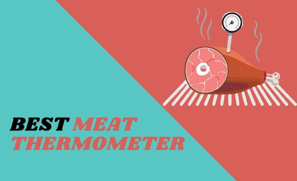 Best Meat Thermometer America's Test Kitchen